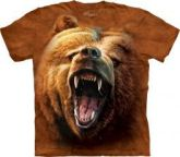 tricko-zurivy-medved-grizzly-704.thumb_270x231